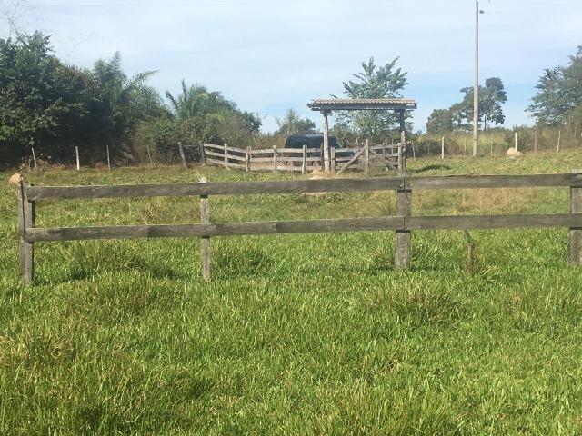 Sítio na Comunidade Carrijo à 60 Km do Trevo do Lagarto - Foto 13
