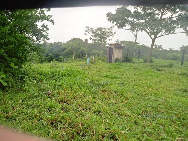 Fazenda próximo a BR 070 a 100km de Várzea Grande - Foto 9