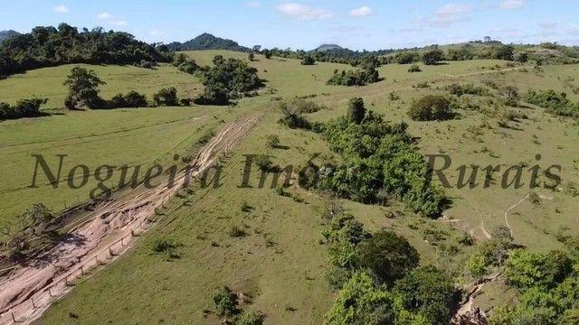 Fazenda com 400 alqueires na região (Nogueira Imóveis Rurais) - Foto 6
