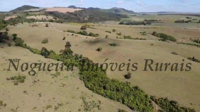 Fazenda com 400 alqueires na região (Nogueira Imóveis Rurais) - Foto 14