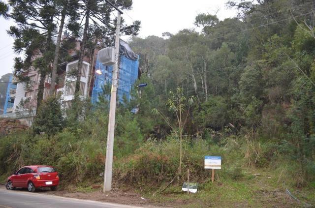 Terreno à venda, 2723 m² por r$ 5.800.000,00 - floresta - gramado/rs - Foto 8