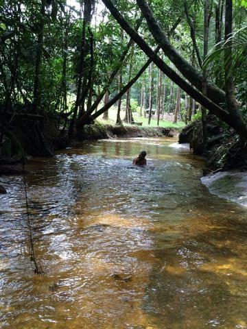 Fazenda em Presidente Figueiredo próximo cachoeira Urubui - Foto 19