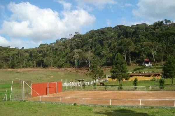 Sítio rural à venda, Colônia Alpina, Teresópolis. - Foto 11