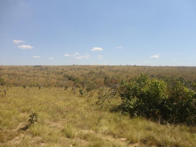 Área de Fazenda com 48 Hectares Localizado no Santo Antônio do Descoberto - Go - Foto 4