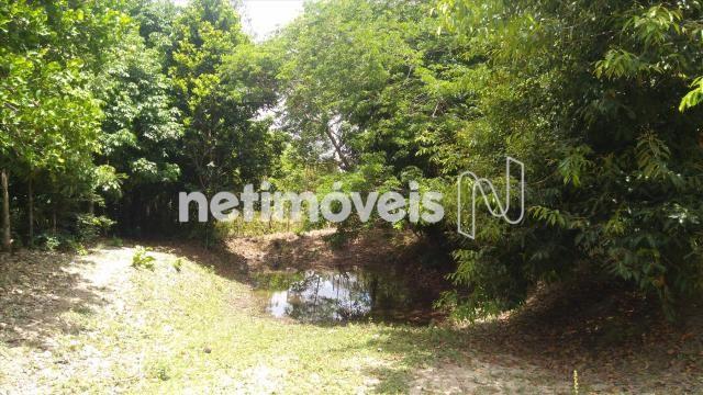 Sítio à venda em Arembepe, Camaçari cod:783794 - Foto 18