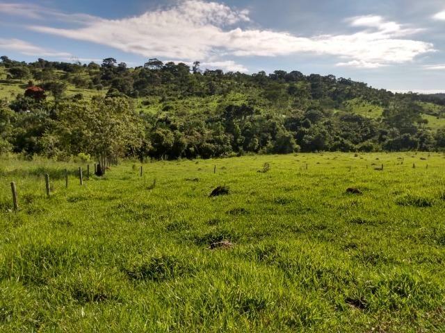 Fazenda no município de Bonfinópolis 24 alqueires - Foto 10