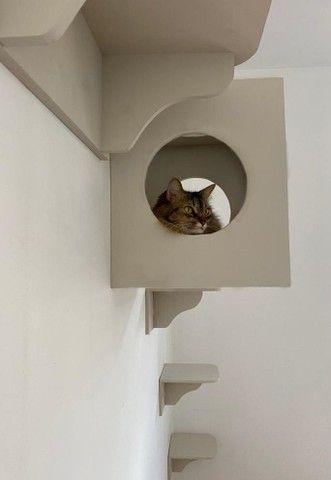 Casa brinquedo de gato - Foto 6