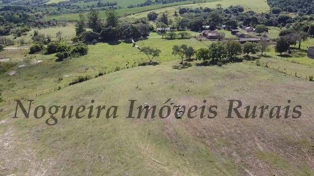 Fazenda com 400 alqueires na região (Nogueira Imóveis Rurais) - Foto 8