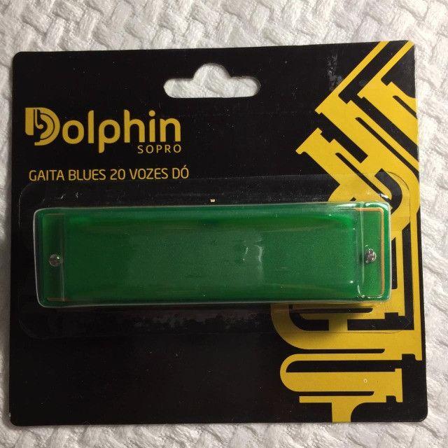 Gaita Dolphin Blues em Dó