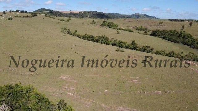 Fazenda com 400 alqueires na região (Nogueira Imóveis Rurais) - Foto 19