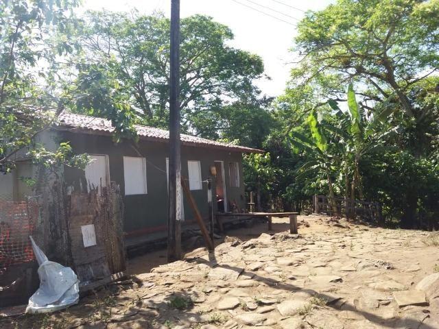 Fazenda no Jardim Grapiúna - Foto 4