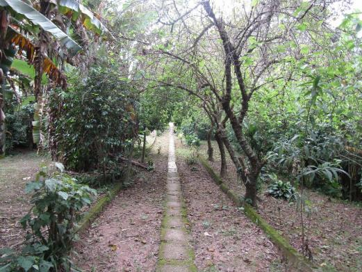 Galpão à venda, 1800 m² por R$ 1.900.000,00 - Jardim Santana - Mairiporã/SP - Foto 4