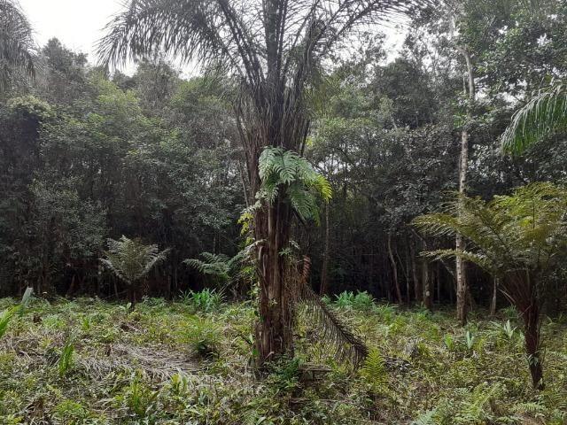 Chacara com 6,156 mts - Foto 16