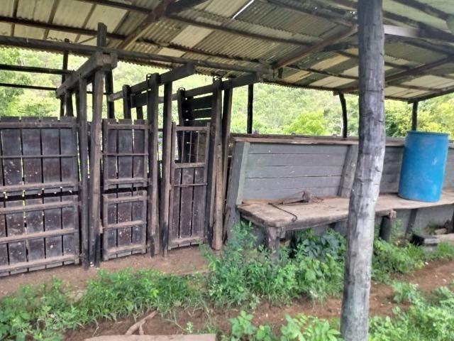 Fazenda próximo a BR 070 a 100km de Várzea Grande - Foto 8