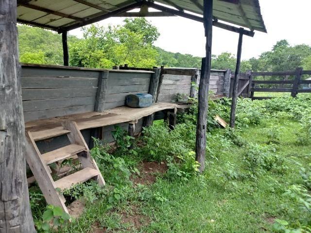Fazenda próximo a BR 070 a 100km de Várzea Grande - Foto 10