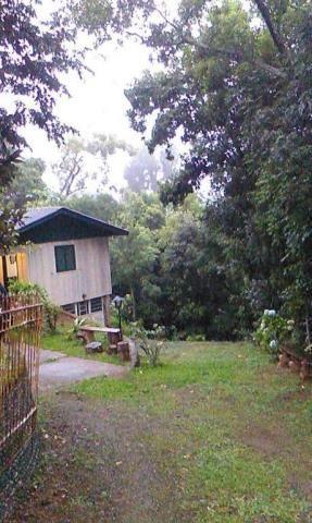 Sítio com 2 dormitórios à venda, 200000 m² por r$ 350.000,00 - santa terezinha - canela/rs - Foto 15