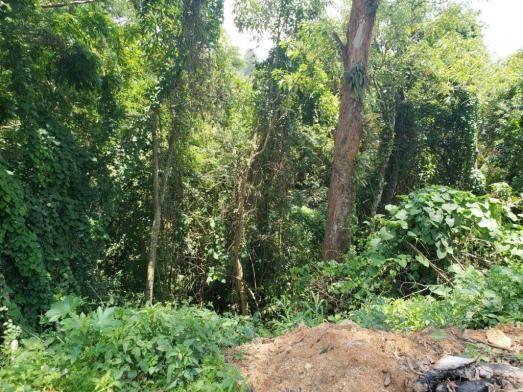 Terreno à venda, 768 m² por R$ 85.000,00 - São Vicente - Mairiporã/SP - Foto 3