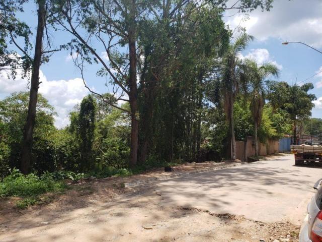 Terreno à venda, 768 m² por R$ 85.000,00 - São Vicente - Mairiporã/SP