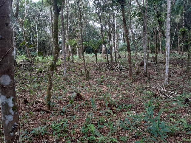 Chacara com 6,156 mts - Foto 7