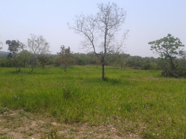 Troco Fazenda,195 hectares,lazer,turismo,pecuária,Cuiabá-MT