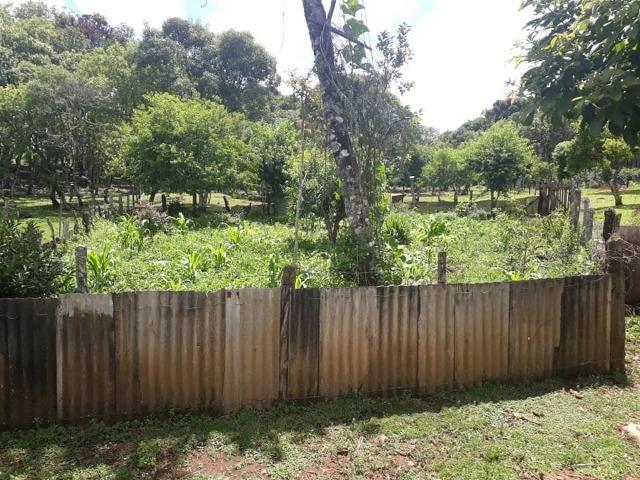 Linda Chácara 24.200 m2 ( 1 Alqueire) com 2 Casas - Palmas PR - Foto 12