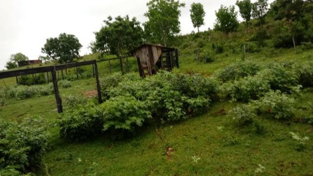 Fazenda próximo a BR 070 a 100km de Várzea Grande - Foto 6