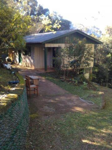 Sítio com 2 dormitórios à venda, 200000 m² por r$ 350.000,00 - santa terezinha - canela/rs - Foto 17