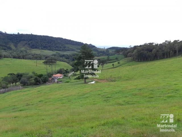 Sítio à venda com 3 dormitórios em Alto limeira, Alfredo wagner cod:851 - Foto 4