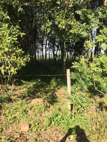 Chácara em boa localização em Estância Velha - Foto 2