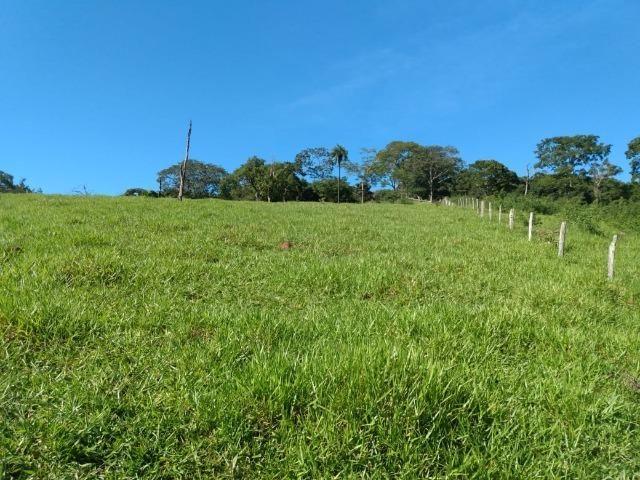 Fazenda no município de Bonfinópolis 24 alqueires - Foto 9
