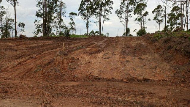 VM. Terrenos em promoção venha conferir - Foto 3