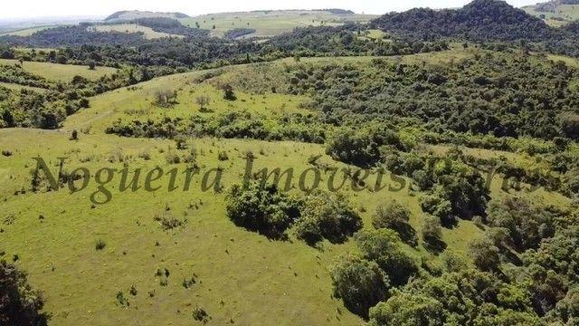 Fazenda com 400 alqueires na região (Nogueira Imóveis Rurais) - Foto 7