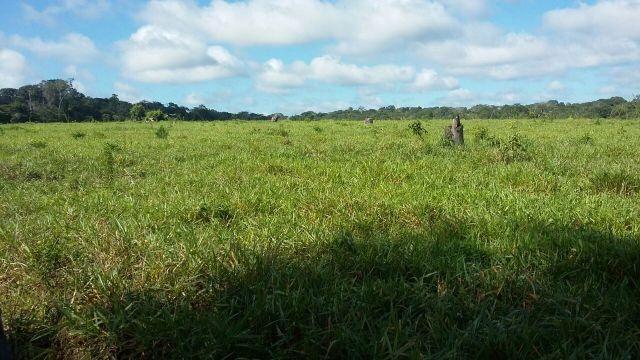 Fazenda em Alto Alegre