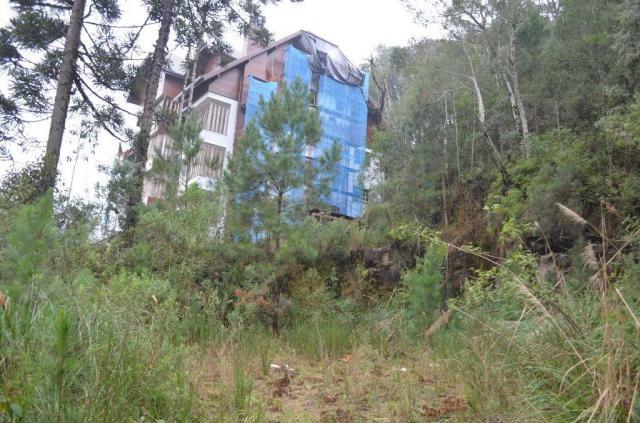 Terreno à venda, 2723 m² por r$ 5.800.000,00 - floresta - gramado/rs - Foto 5