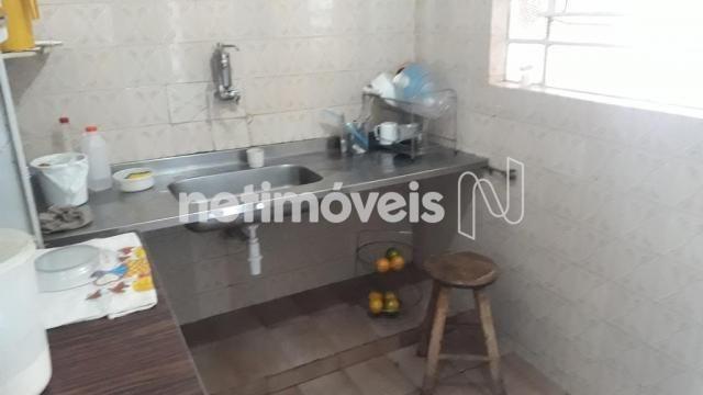 Casa à venda com 5 dormitórios em Novo glória, Belo horizonte cod:766818 - Foto 13