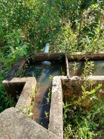 Fazenda no município de Bonfinópolis 24 alqueires - Foto 12