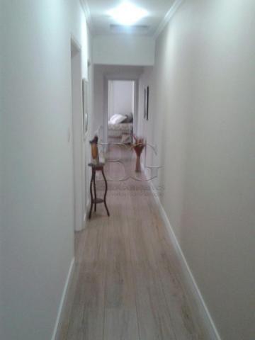 Casa à venda com 3 dormitórios em Centro, Pocos de caldas cod:V36551 - Foto 7