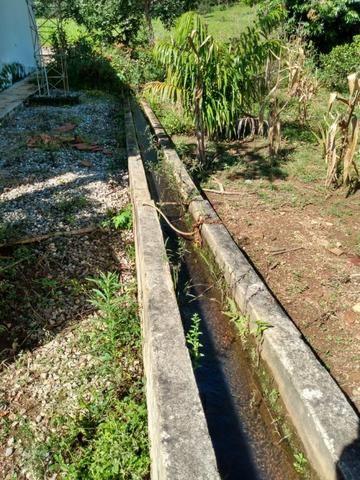 Fazenda no município de Bonfinópolis 24 alqueires - Foto 14