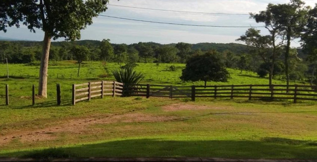 Fazendas parceladas - Foto 3