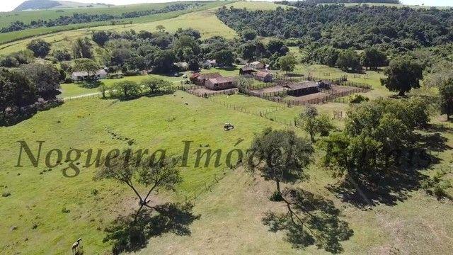 Fazenda com 400 alqueires na região (Nogueira Imóveis Rurais) - Foto 16
