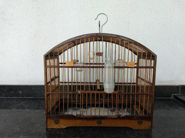 Resultado de imagem para gaiola velha de madeira
