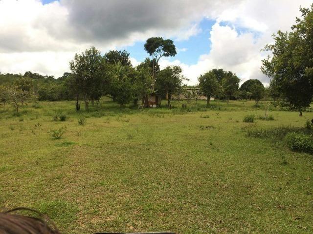 Fazenda em Presidente Figueiredo próximo cachoeira Urubui - Foto 15