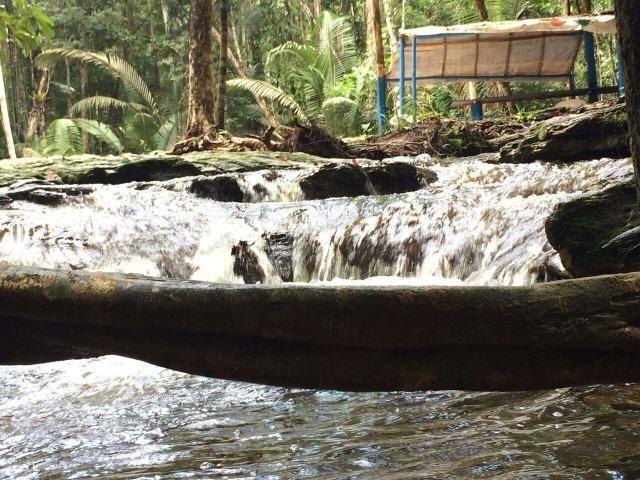 Fazenda em Presidente Figueiredo próximo cachoeira Urubui - Foto 14