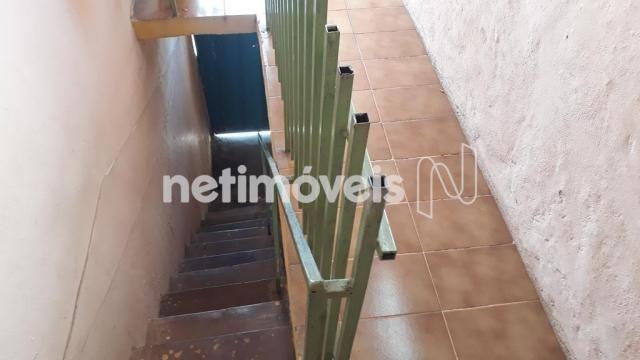 Casa à venda com 5 dormitórios em Novo glória, Belo horizonte cod:766818 - Foto 3