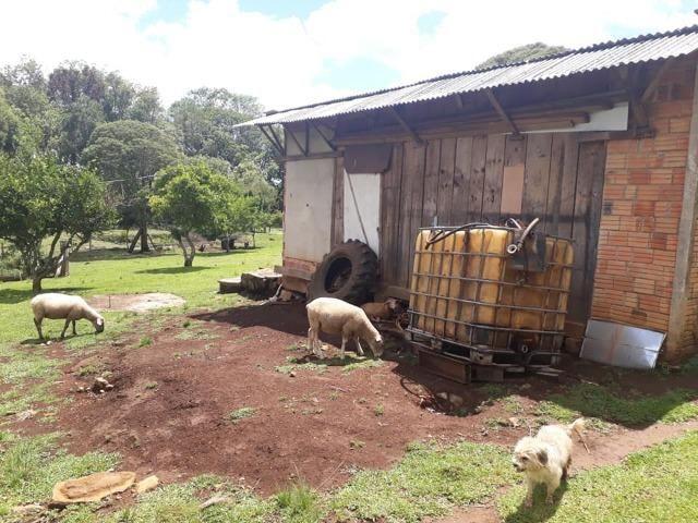 Linda Chácara 24.200 m2 ( 1 Alqueire) com 2 Casas - Palmas PR - Foto 15