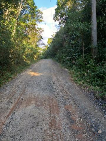 Terreno Excelente, Plano, Barato, Embura, 2.500m, R$ 40 Mil - Foto 3