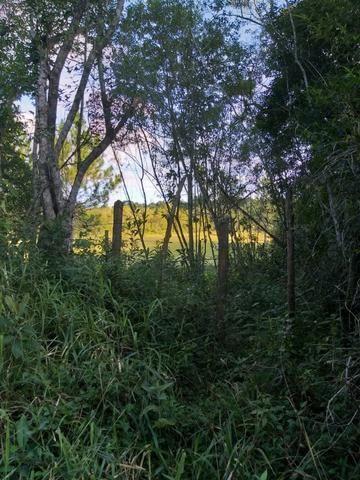 Terreno Excelente, Plano, Barato, Embura, 2.500m, R$ 40 Mil - Foto 2