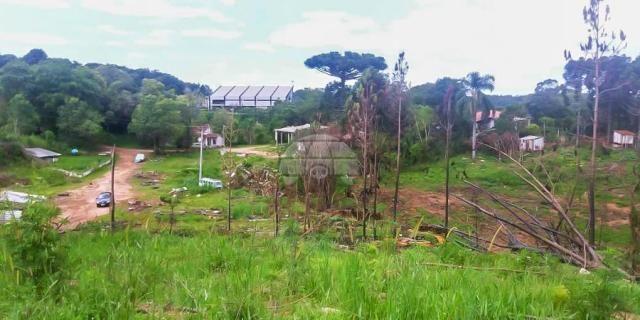 Chácara à venda em Ferraria, Campo largo cod:149100 - Foto 3