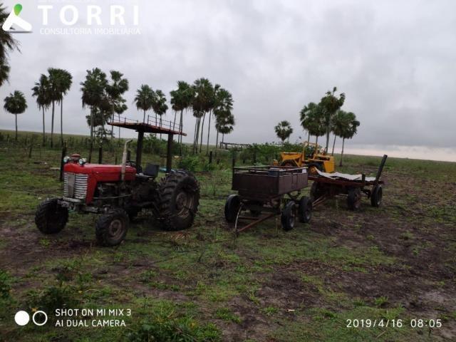 Fazenda a venda em Corumbá - Foto 7