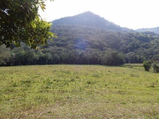 Área c/ 2 hec. Estrada Municipal de Canudos-Arroio Grande-10003 - Foto 4